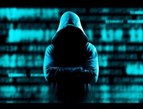 Hackers: el sistema inmunitario de internet